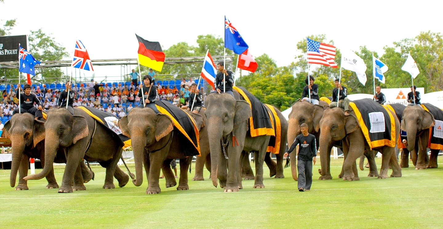 elephant-polo-parade